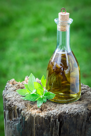 witchdoctor: Homemade liqueur made of alcohol and garlic