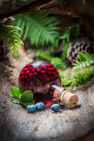 healer: Sweet liqueur made of blueberries and alcohol in forest Stock Photo