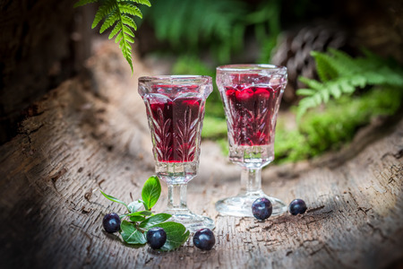 healer: Lliqueur made of alcohol and blueberries in summer