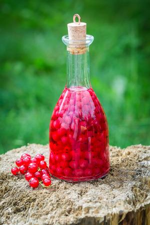 Zelfgemaakte likeur gemaakt van rode bessen en alcohol in de zomer