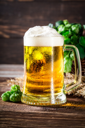 Closeup of fresh and cold beer with wheat and hops Фото со стока