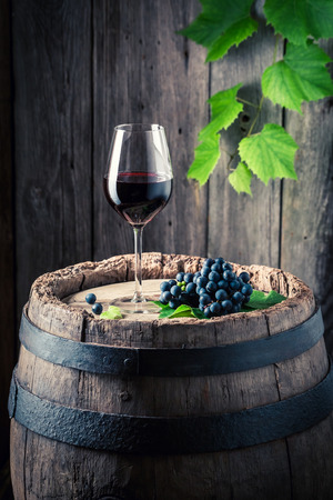 Glass of red wine and fresh grapes on old barrel