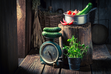 Wooden basement with fresh herbs and vegetables Stock Photo