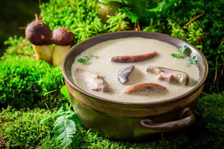 Ready to eat mushroom soup made of noble mushrooms. Stock Photo