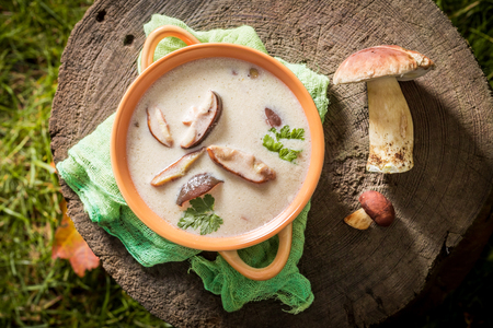 Tasty mushroom soup made of noble mushrooms