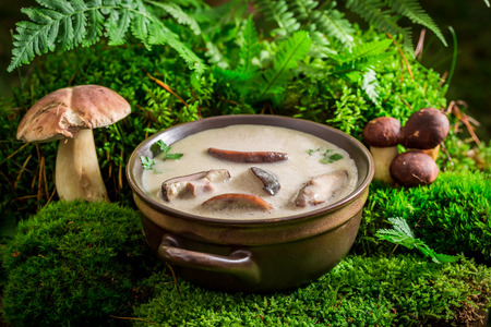 Ready to eat mushroom soup on green moss in forest Imagens - 82111624