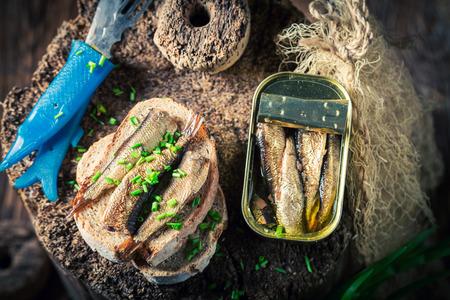 Tasty Sandwich mit Sardinen und Vollkornbrot Standard-Bild - 82111650