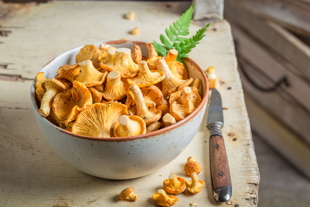 Healthy chanterelles in an old clay bowl Reklamní fotografie - 83431827