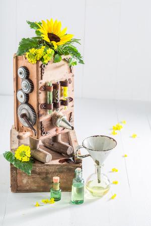 해바라기와 씨앗으로 기름을 만드는 독특한 기계 스톡 콘텐츠