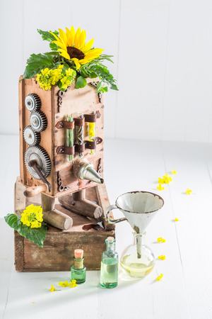 Unique machine to make oil with sunflower and seeds