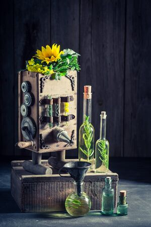 ヒマワリの種子と油を作る特別な機械 写真素材