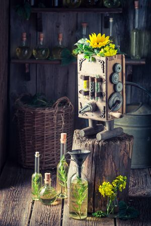 Homemade virgin oil machine with sunflower and seeds Фото со стока