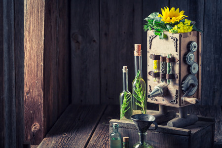 Antique machine to make oil with sunflower and seeds