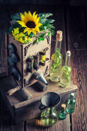 ひまわりの種子とユニークなバージン オイル機械
