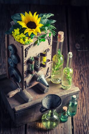 해바라기와 씨앗이있는 고유 한 처녀 기름 기계 스톡 콘텐츠