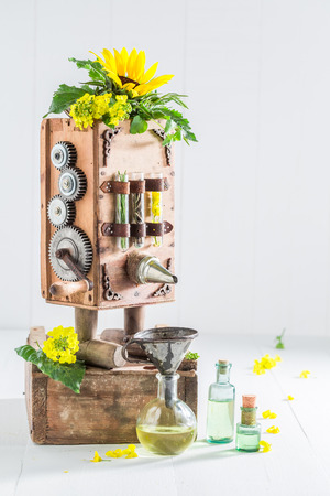 canola: Antique virgin oil machine with sunflower and seeds