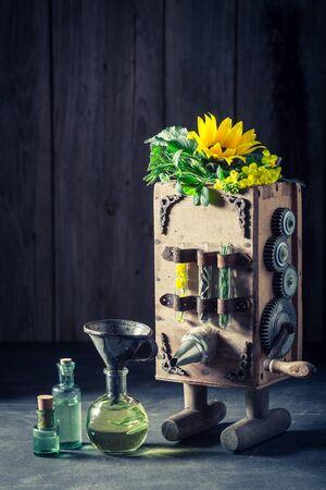 해바라기와 씨앗을 가진 기름을 만드는 원래 기계 스톡 콘텐츠