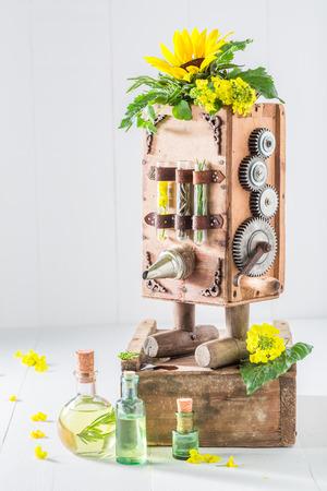 ひまわりの種子と油ビンテージ マシン 写真素材