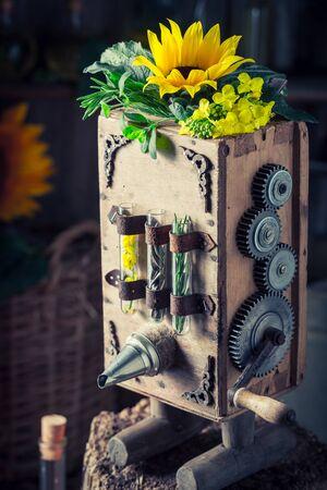 해바라기와 씨앗이있는 빈티지 처녀 기름 기계 스톡 콘텐츠