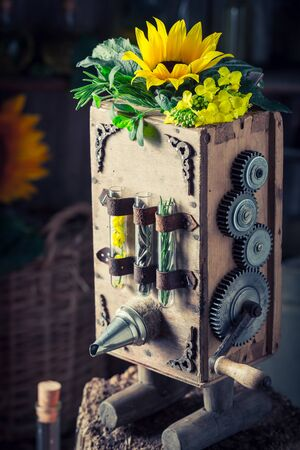 Vintage virgin oil machine with sunflower and seeds