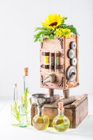Original machine to make oil in old basement Фото со стока