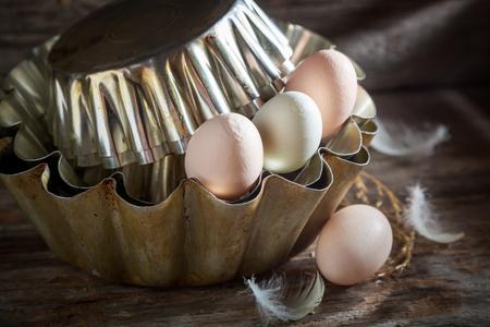 ファームからの良い無料の範囲の卵