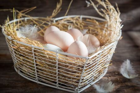 Healthy and ecological eggs from the farm Stok Fotoğraf