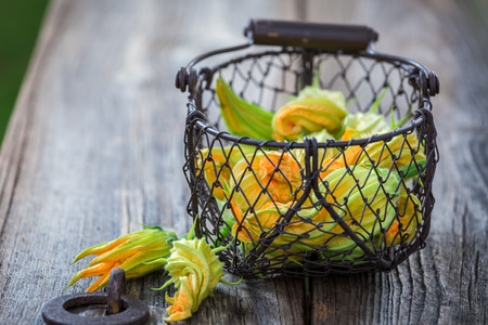 Fresh zucchini flowers in old small basket Stock Photo