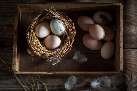 Healthy free range eggs from the henhouse