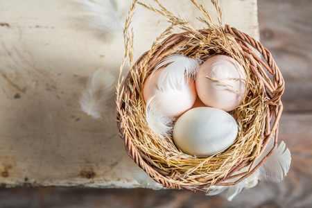 Healthy and ecological eggs in the basket