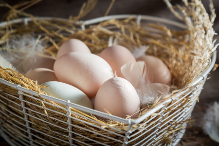 Good and ecological eggs from the henhouse Stok Fotoğraf