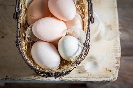 Healthy free range eggs in the basket