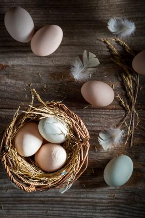 田舎からの新鮮で生態学的な卵