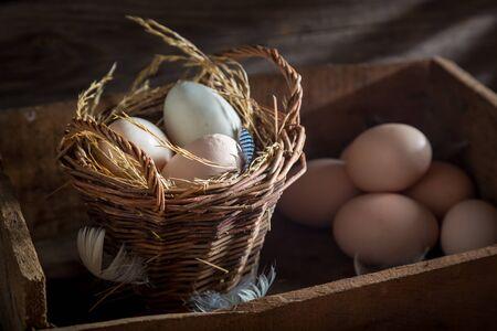 바구니에 신선하고 생태적 인 계란