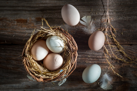 Fresh and ecological eggs from the henhouse Stock Photo