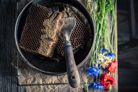 Rusty tools for beekeeping with honeycombs, hats and honey