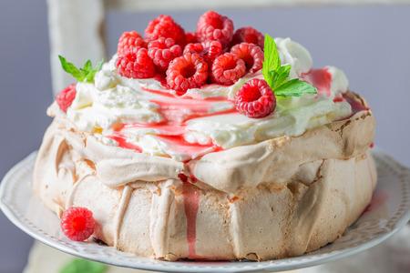 마스코트와 딸기로 만든 수제 소박한 파블로바 케이크