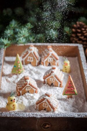 Gorgeous Christmas gingerbread village with trees and snow