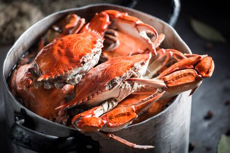 Preparation for homemade crab with allspice and bay leaf