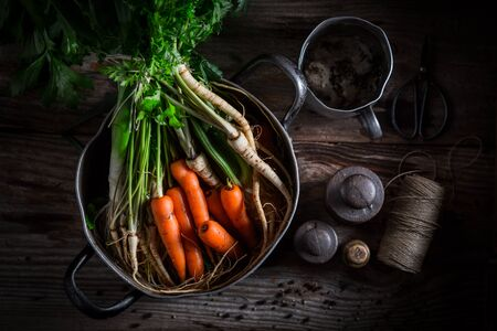 Preparation for tasty broth with carrots, parsley and leek