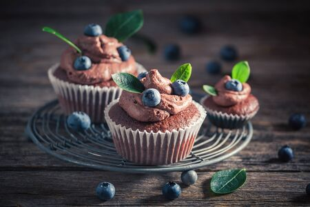 Delicious chocolate muffin made of cream and fresh fruits Banco de Imagens