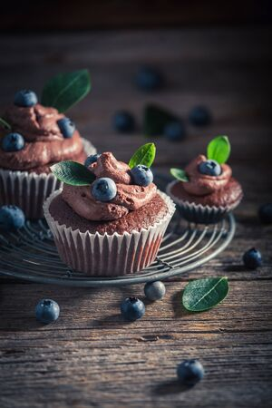 Sweet brown cupcake made of cream and fresh fruits Banco de Imagens