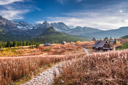 Wonderful path to the mountain valley in Tatras in Poland