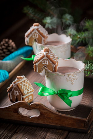 Gingerbread cottages with hot chocolate in Christmas evening
