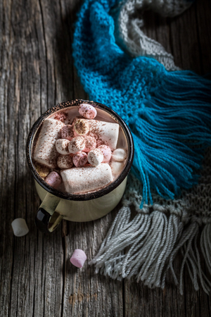 Homemade hot chocolate with marshmallows for Christmas