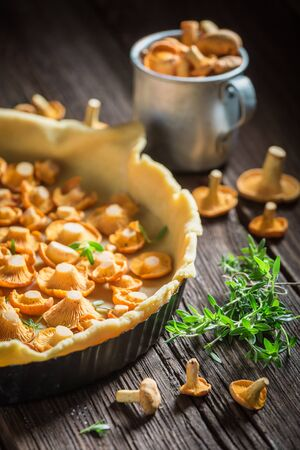 Homemade and rustic tarts made of wild mushrooms and herbs