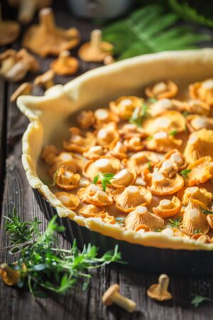 Delicious and crispy tarts made of wild mushrooms and herbs Stock Photo