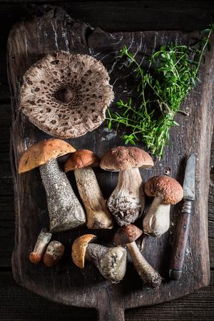 오래 된 보드에 다양 한 버섯과 백 리 향