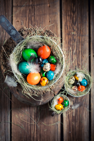 Quail and hen eggs for Easter with feathers and hay