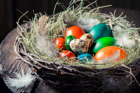 Closeup of colourfull eggs for Easter with hay and feathers